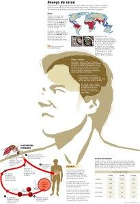 Confira o infográfico sobre a malária