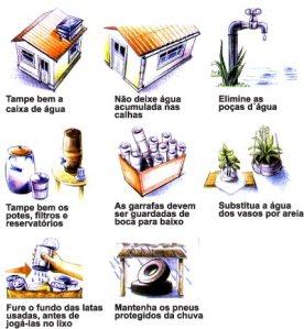 Veja como se prevenir contra a dengue