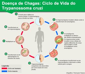 Chagas 150122