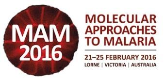150908 - MAM Molecular