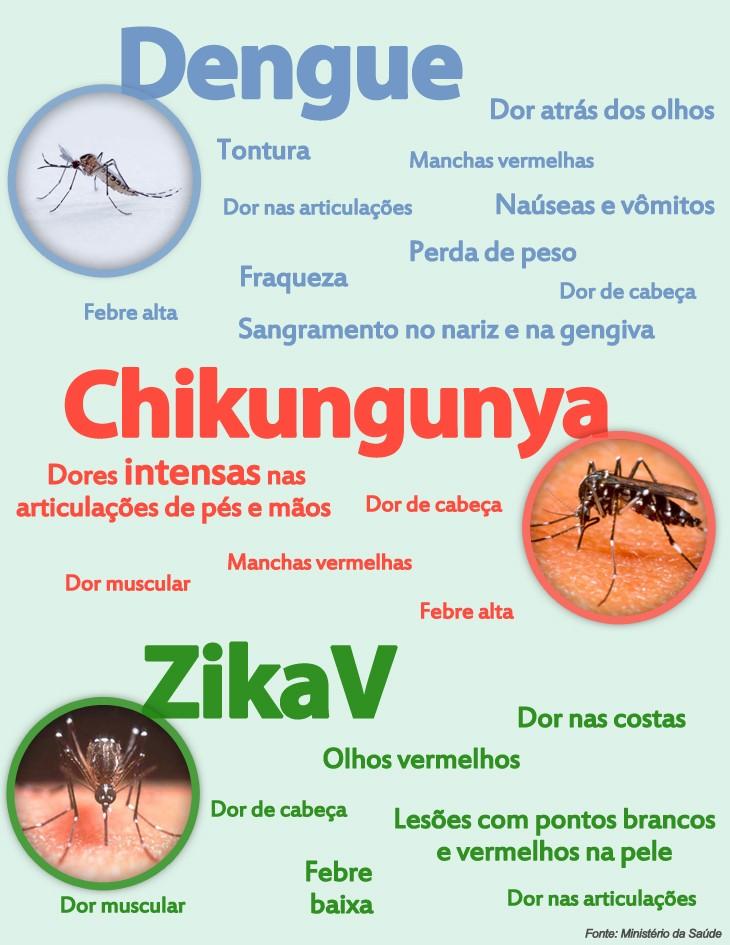 Conhecido Zika vírus já foi registrado em 14 estados, segundo Ministério da  VU68