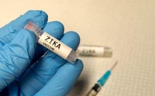 160524 - Zika Vacina